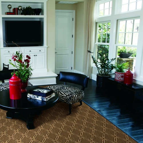 Seagrass Sisal Stanton Carpet