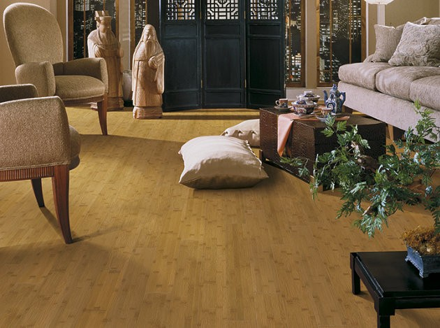 Bamboo Horrizontal Shaw Hardwood Flooring