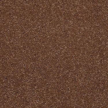 Beyond Fashion Plush Carpet