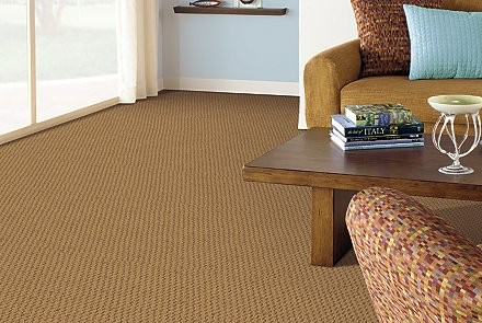 Insightful-Image-Mohawk-Residential-Carpet