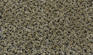 Pheasants-Run-Wild-Mushroom-Residential-Rental-Property-Carpet