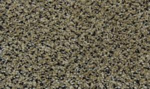 Pheasants-Run-Wild-Mushroom-Residential-Rental-Property-Carpet