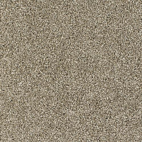 Dream Weaver Nylon Carpet Reviews Carpet Vidalondon