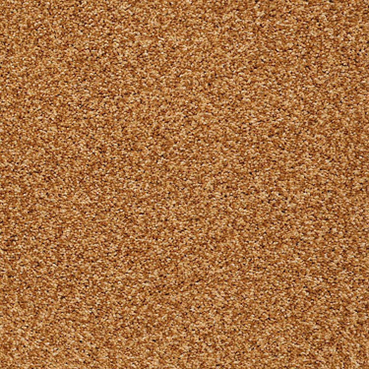 664-Inca-Gold-Days-Like-This-Shaw-Tuftex-Carpet