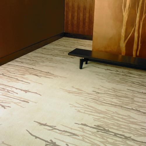 Eco-Solution-Q-Nylon-Shaw-Shadow-Carpet
