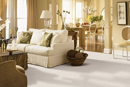 Gentle-Essence-Mohawk-Living-Room-Carpet