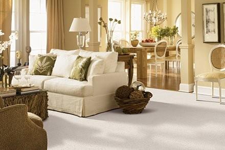 Gentle-Essence-Mohawk-Living-Room-Carpet