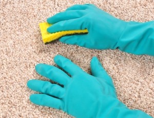 Never-Scrub-A-Carpet-To-Clean-Up-A-Stain-This-Will-Only-Make-It-Worse