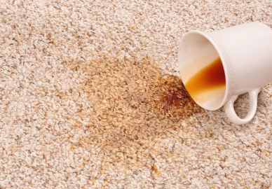Tea-Stain-On-Carpet