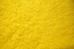 Yellow-Carpet