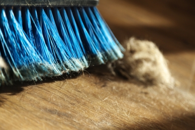 Dusty-Sweeping-Hardwood-Floors