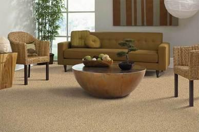 Mohawk-Smartstrand-Carpet